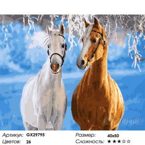 Пара лошадей Раскраска картина по номерам на холсте GX29795