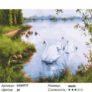 Сложность и количество цветов Лебеди у берега Раскраска картина по номерам на холсте GX29777