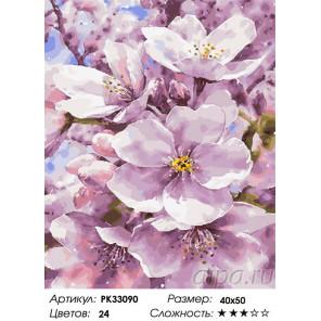 Сложность и количество цветов Яблоневый дым Раскраска картина по номерам на холсте PK33090