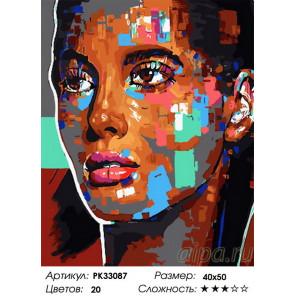 Сложность и количество цветов Гордый взгляд Раскраска картина по номерам на холсте PK33087