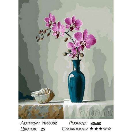 PK33082 Орхидея и ракушка Раскраска картина по номерам на ...