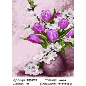 Сложность и количество цветов Весенние цветы Раскраска картина по номерам на холсте PK33075