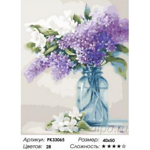 Сложность и количество цветов Сирень в банке Раскраска картина по номерам на холсте PK33065