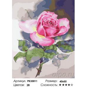 Сложность и количество цветов Цветок на рассвете Раскраска картина по номерам на холсте PK33011