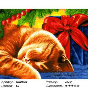Сложность и количество цветов Новогодний сон Раскраска картина по номерам на холсте GX30732