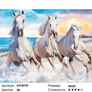Сложность и количество цветов Галоп по волнам Раскраска картина по номерам на холсте GX30729