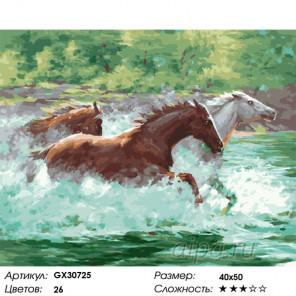 Сложность и количество цветов Стремительный бег Раскраска картина по номерам на холсте GX30725