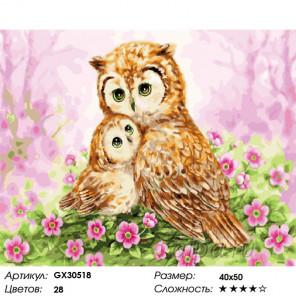 Сложность и количество цветов Сова и совёнок Раскраска картина по номерам на холсте GX30518
