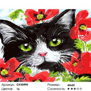 Сложность и количество цветов Кот и маки Раскраска картина по номерам на холсте GX30490
