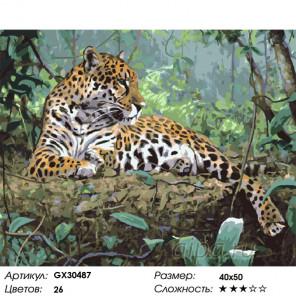 Сложность и количество цветов Отдых хищника Раскраска картина по номерам на холсте GX30487