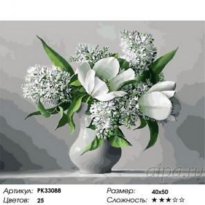 Сложность и количество цветов Белое и серое Раскраска картина по номерам на холсте PK33088