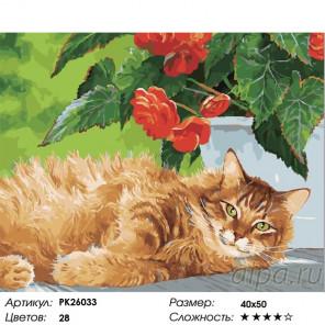 Сложность и количество цветов Рыжий пушистик Раскраска картина по номерам на холсте PK26033
