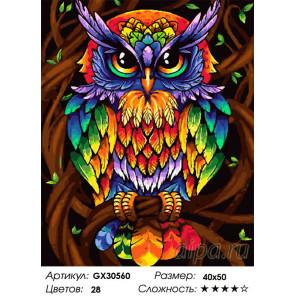 Сложность и количество цветов Ночной страж Раскраска картина по номерам на холсте GX30560