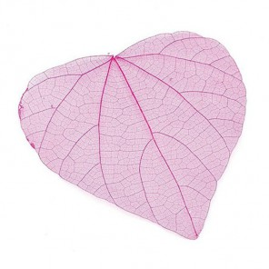 Розовые Листочки скелетированные Украшение для скрапбукинга, кардмейкинга Knorr Prandell
