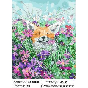 Сложность и количество цветов Летнее блаженство Раскраска картина по номерам на холсте GX30000