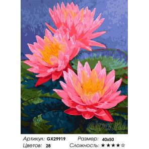 Сложность и количество цветов Кувшинки Раскраска картина по номерам на холсте GX29919