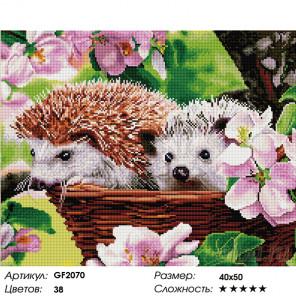 Количество цветов и сложность Ежики Алмазная мозаика вышивка Painting Diamond GF2070