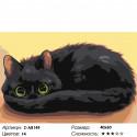 Сложность и количество цветов Темное чудо Раскраска картина по номерам на холсте Z-AB149