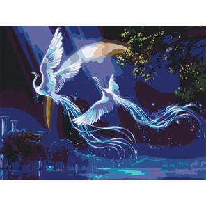 Звездные фениксы Раскраска картина по номерам на холсте KTMK-Fenixove1-60x80