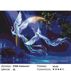 Сложность и количество цветов Звездные фениксы Раскраска картина по номерам на холсте KTMK-Fenixove1