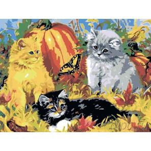 2 Котята и бабочка Раскраска по номерам на холсте Живопись по номерам