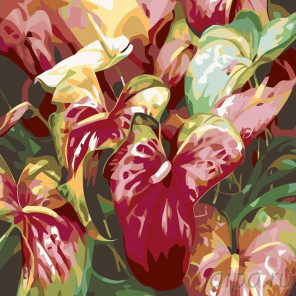 Раскладка Каллы Раскраска картина по номерам на холсте F20