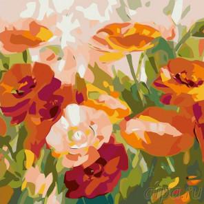 Раскладка Маки Раскраска картина по номерам на холсте F22