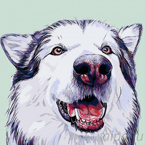 Раскладка Вулфи Раскраска картина по номерам на холсте A231