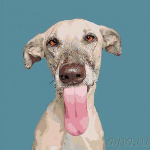 Раскладка Кинзи Раскраска картина по номерам на холсте A172