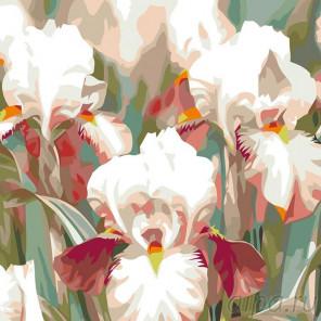 Раскладка Ирисы Раскраска картина по номерам на холсте F15