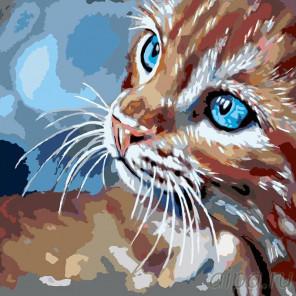 Раскладка Любопытство Раскраска картина по номерам на холсте A112