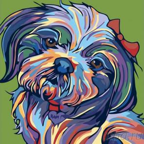 Раскладка Разноцветная болонка Раскраска картина по номерам на холсте A142