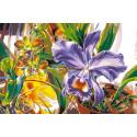 Фиолетовый нарцисс Раскраска картина по номерам на холсте KRYM-FL009