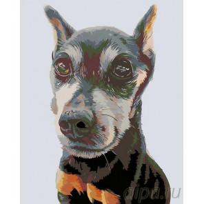 Элиот Раскраска картина по номерам на холсте A270