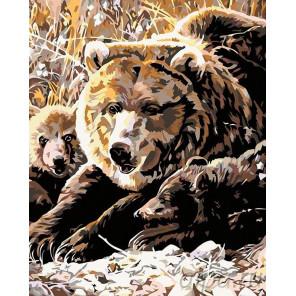 Семья медведей Раскраска картина по номерам на холсте A68