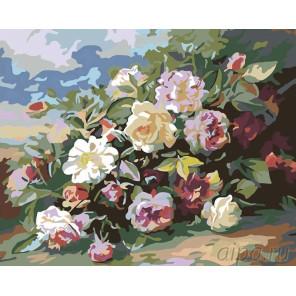 Букет роз Раскраска картина по номерам на холсте F01