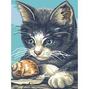 Котенок и улитка Раскраска картина по номерам на холсте A54