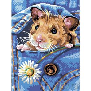 Раскладка Хомячок Раскраска картина по номерам на холсте A53