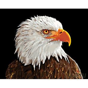 Гордый профиль Раскраска по номерам на холсте Живопись по номерам A420