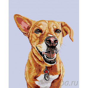 Внимательный пес Раскраска по номерам на холсте Живопись по номерам A221