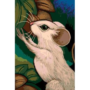 Белая мышь Раскраска по номерам на холсте Живопись по номерам A381