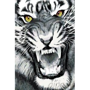 Ярость тигра Раскраска по номерам на холсте Живопись по номерам A395