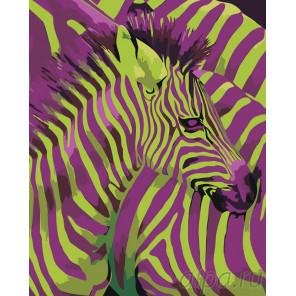 Детеныш зебры Раскраска по номерам на холсте Живопись по номерам PA110