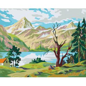 Уединение в горах Раскраска по номерам на холсте Живопись по номерам PP09