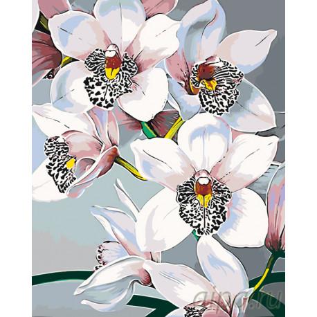 F45-100x125 Стильные орхидеи Раскраска по номерам на ...