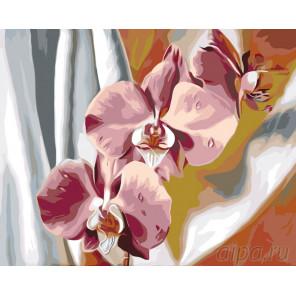 Схема Шелковые орхидеи Раскраска по номерам на холсте Живопись по номерам F47
