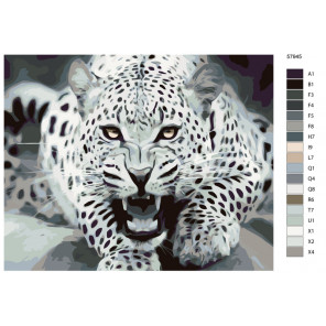 Схема Угроза леопарда Раскраска по номерам на холсте Живопись по номерам KTMK-57945