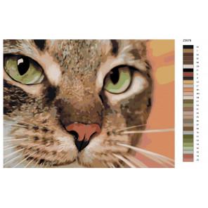 Раскладка Хищный кот Раскраска по номерам на холсте Живопись по номерам Z-Z3579