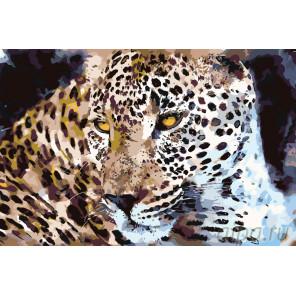 Раскладка Самый красивый Раскраска картина по номерам на холсте A432