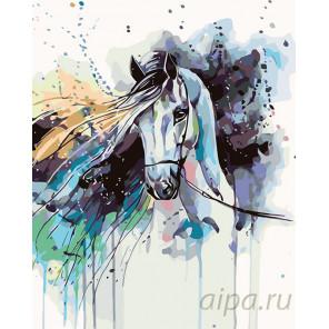 Красочная лошадь Раскраска картина по номерам на холсте KTMK-48662